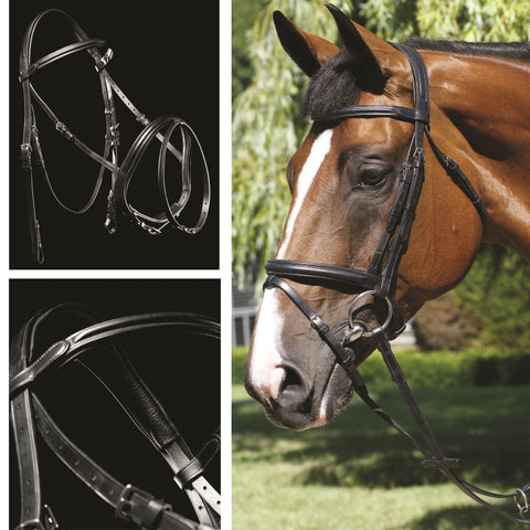 Mark Todd Bridles