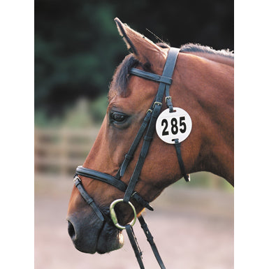Bridle number holder