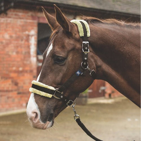 Mark Todd Fleece Headcollar