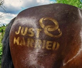 Stencil - Just Married