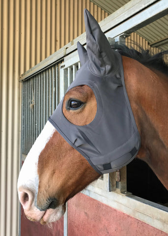 Fenwick Equestrian Liquid Titanium Mask with ears