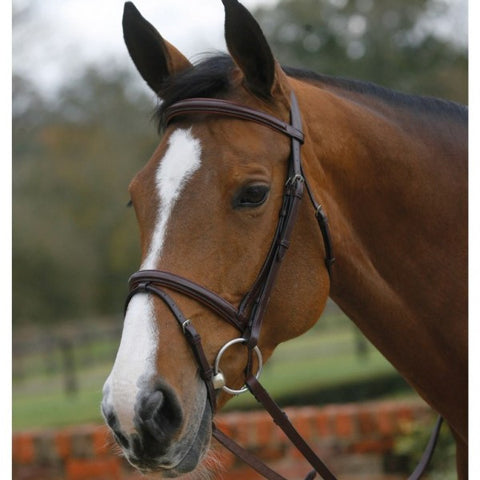 Mark Todd square raised padded bridle with flash noseband