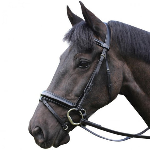 Mark Todd patent leather dressage bridle with flash noseband
