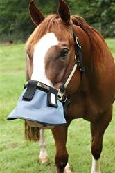 Nose shade - attach to halter/bridle