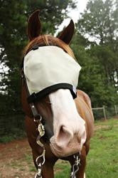 Eye shade - attach to bridle