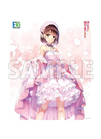 Saekano Fantasia Bunko Megumi Dress Ver. - Character Canvas Art Series No.057-F30th P.4