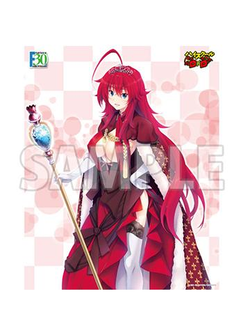 High School DxD Rias Gremory Dress Ver. - Character Canvas Art Series No.064-F30th