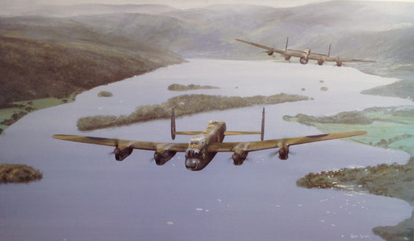 Eight Merlins Over Windermere