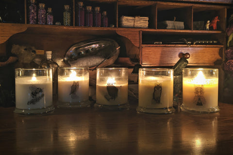 Sea Witch Botanicals signature scented soy wax vegan candles