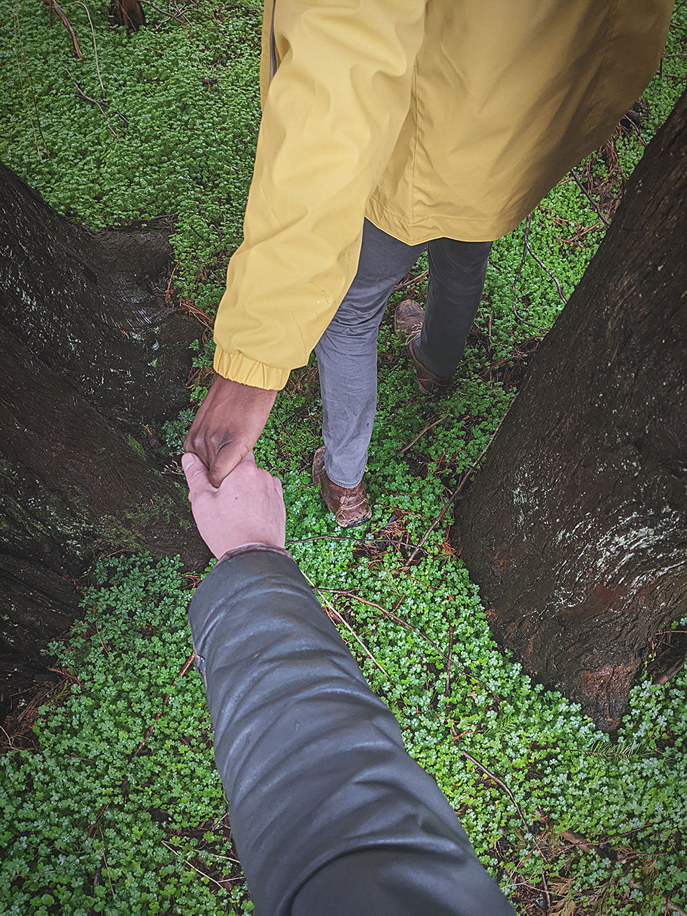 Holding hands in the woods
