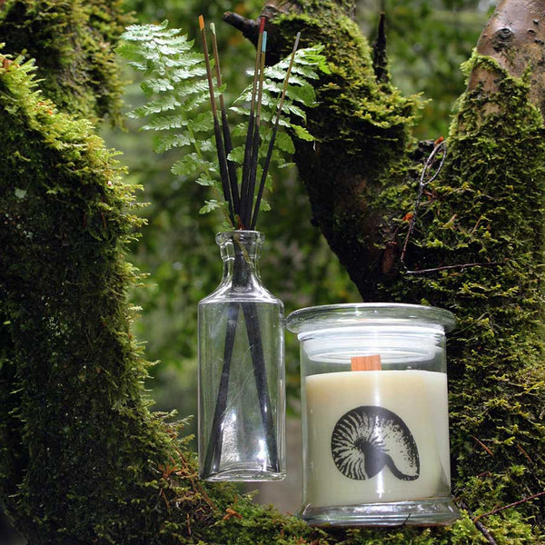 All-natural soy candle in the woods, by Sea Witch Botanicals.