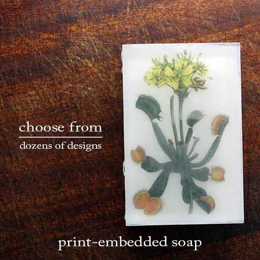 Body Soap: Endangered Species Awareness-Sea Witch Botanicals
