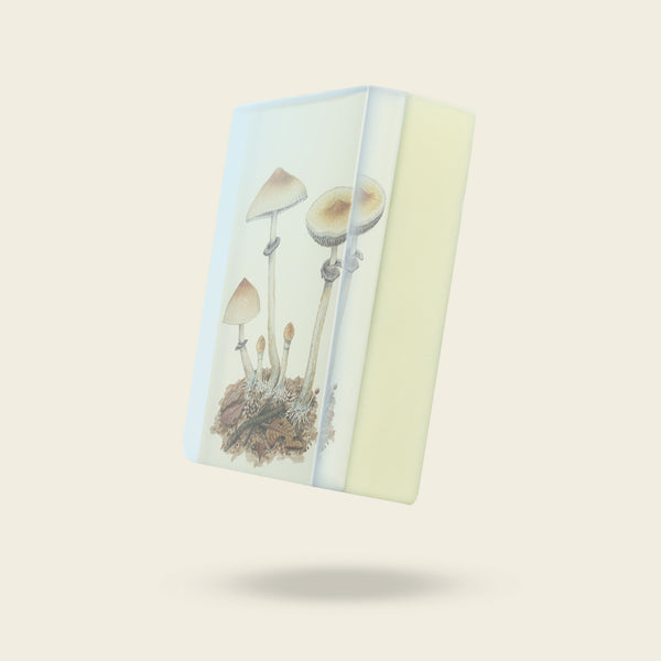 Body Soap: Psychedelic Mushrooms - Psilocybe cyanescens-Sea Witch Botanicals