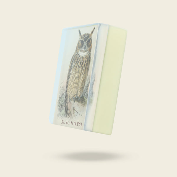 Body Soap: Arabian Spotted Eagle Owl - Bubo Milesi-Sea Witch Botanicals