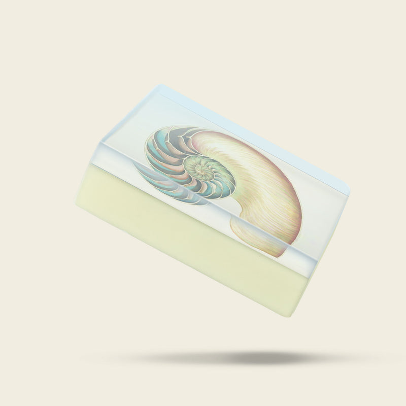 Body Soap: Nautilus-Sea Witch Botanicals
