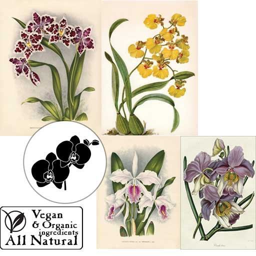A group of alluring orchids, printed and embedded in our vegan, all-natural, organic body soap