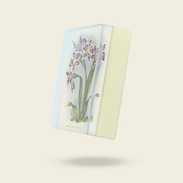 Body Soap: Purple Odontoglossum Orchid 1