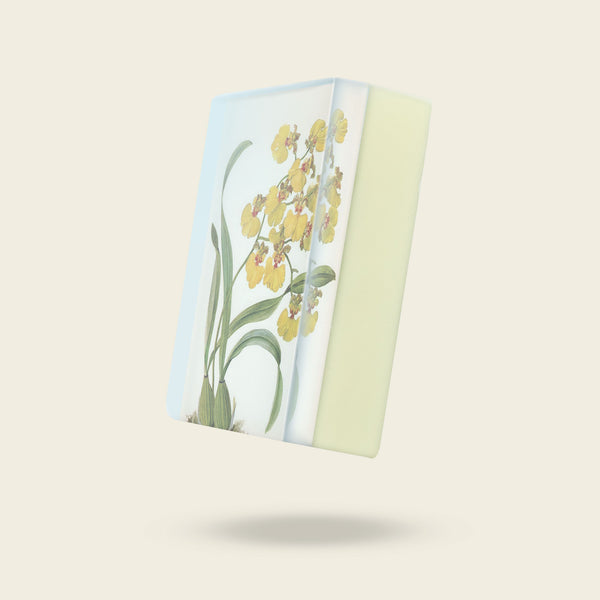 Body Soap: Yellow Oncidium Orchid-Sea Witch Botanicals