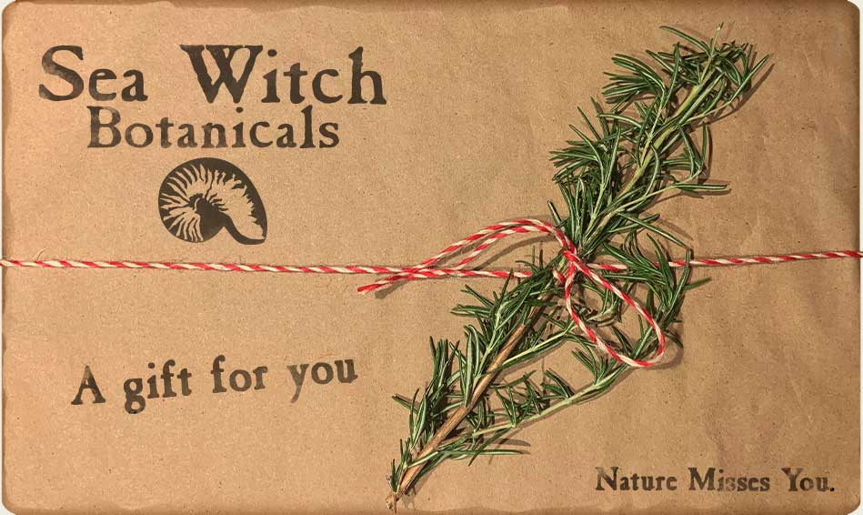 Sea Witch Botanicals gift certificate & gift card