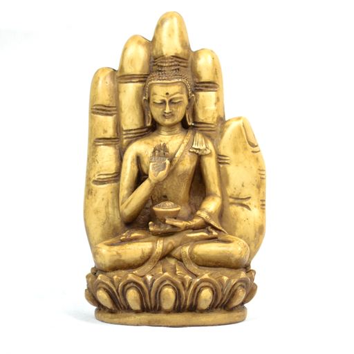 Buddha In Palm