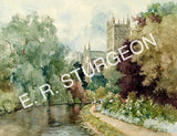 2020 Sturgeon Calendar - Somerset
