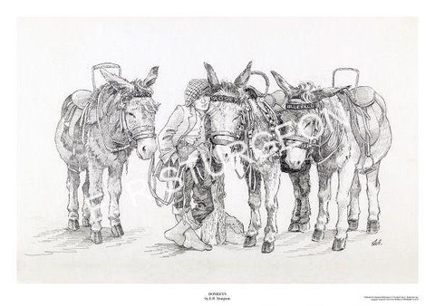 Donkeys - Pencil Drawing