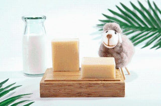 Beyond Health Organic Soap - Baby Organic - Young Earth Sanctuary Resources