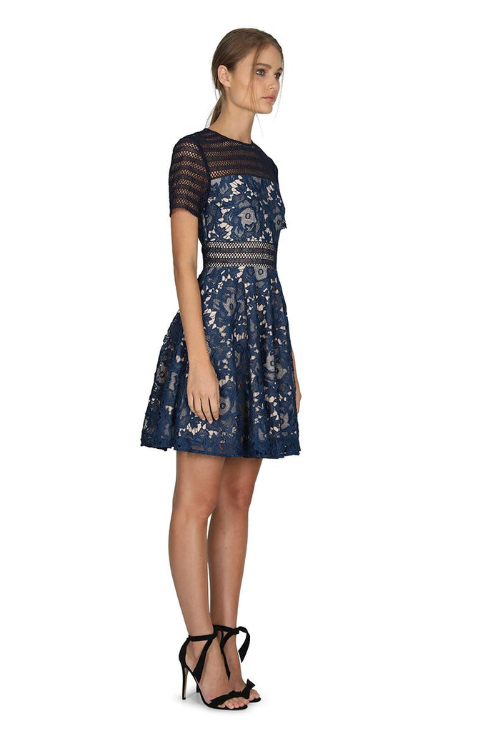 Alessandra Lace Fit and Flare Dress