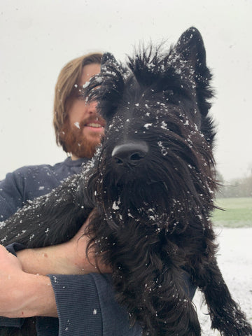 Wilfred Dog With Snow