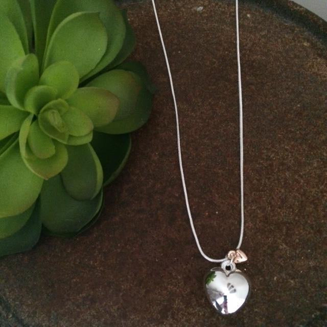 Large silver & small rose gold necklace
