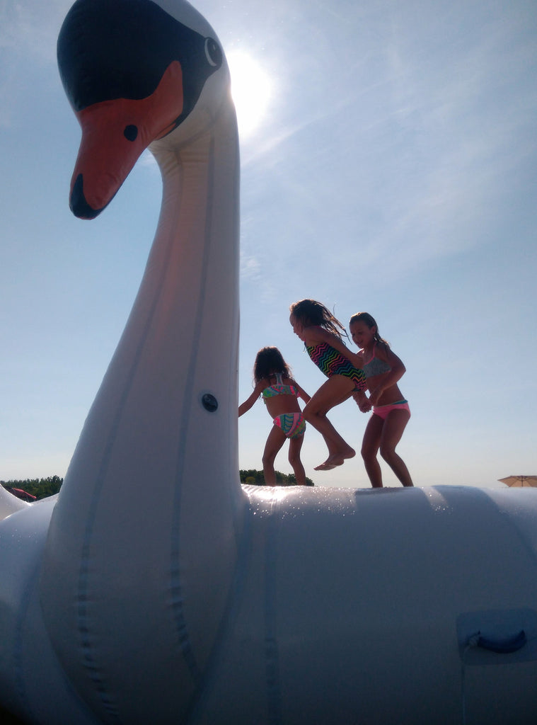 Giant Swan Summer Swimming Pool Inflatable Float