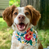 The Tibby Floral Dog Bandana - Three Wags