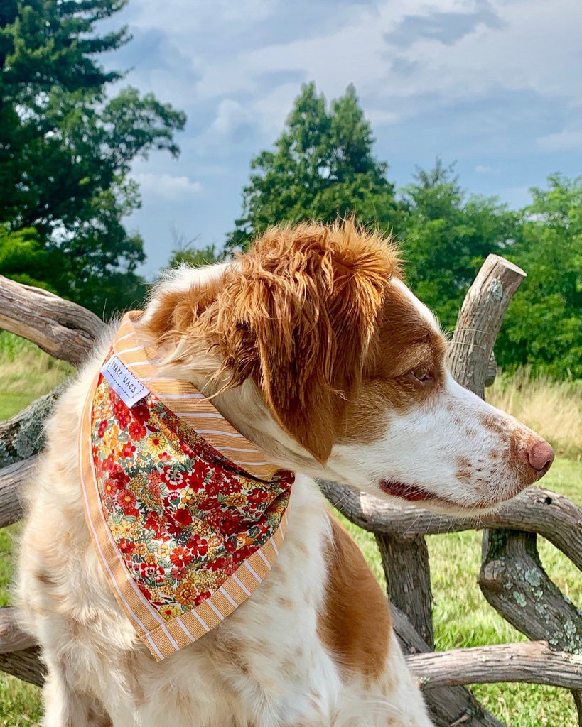 The Annie Floral Dog Bandana - Three Wags