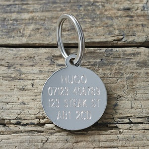 Dog Tag Jack Russel