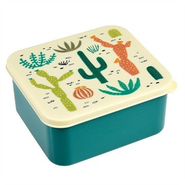 Lunch Box Cactos