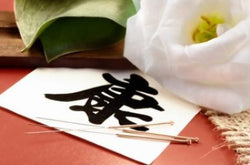 Learn Chinese in Chinese Medicine <br>April 8