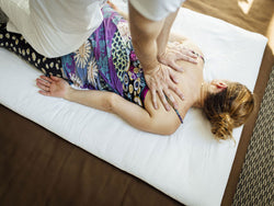 Shiatsu 101 for Healthcare Practitioner's: A Beginner's Guide to Shiatsu Therapy <br>TBA