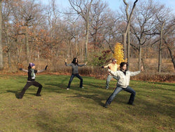 TaiJi Quan<br>Ongoing TaiJi Practice Maintenance Class<br>January 22