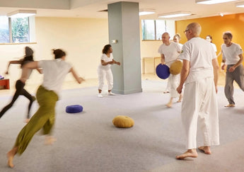 Chōwa Do Ki-Therapy Introductory Training<br> April 25, 2020