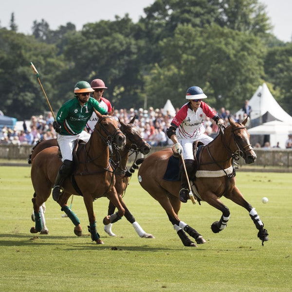 We'll be at Gloucs Festival of Polo