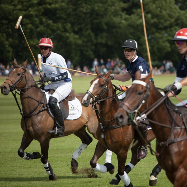 Tripster at Beaufort Polo