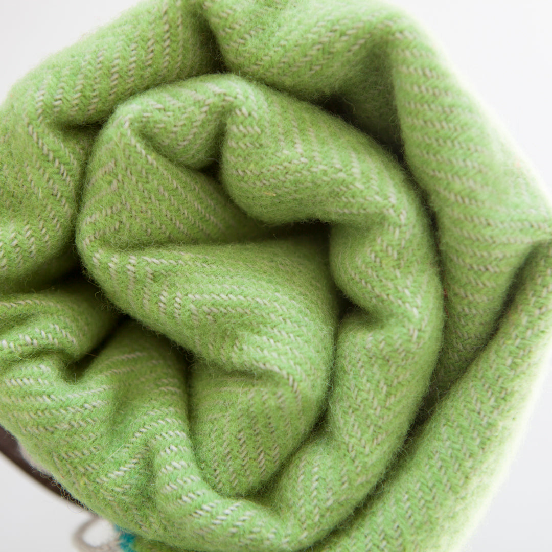 lime-green-picnic-blanket