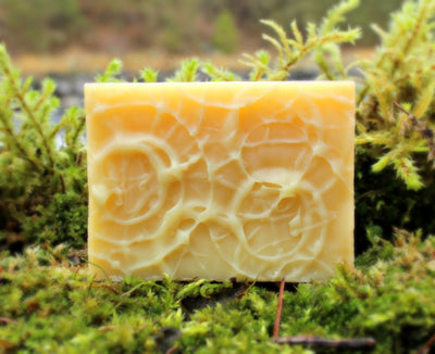 Oasis (Rosemary Peppermint) Shampoo Bar - Organic, Probiotic, & Medicinal - Clearwater Cultures
