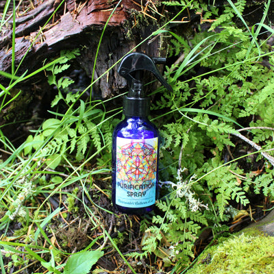 Purification Holy Water - Organic, Probiotic, & Medicinal - Body Spray - 4oz. - Clearwater Cultures