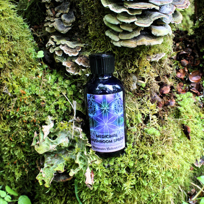 Medicinal Mushroom - Probiotic, Organic & Medicinal - Body Spray - 4oz. - Clearwater Cultures