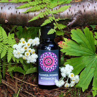Flower Power - Probiotic, Organic, & Medicinal - Body Spray - 4oz. - Clearwater Cultures