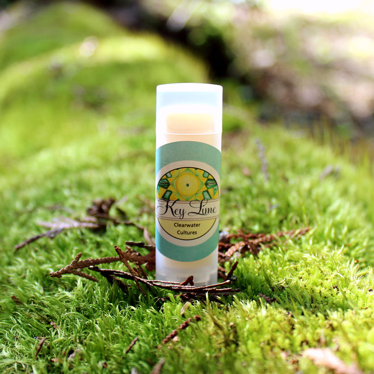 Key Lime - Organic & Probiotic - Lip Balm - .15 oz. - Oval Tub - Clearwater Cultures