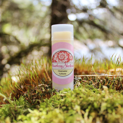 Strawberry Shortcake - Organic & Probiotic - Lip Balm - .15 oz. - Oval Tub - Clearwater Cultures
