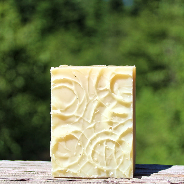 Clarity (Unscented) Shampoo Bar  - Organic, Probiotic, & Medicinal - Clearwater Cultures
