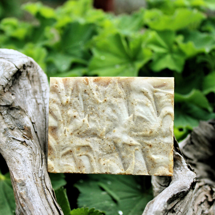 Body Build (BF&C) Soap - Organic, Probiotic, & Medicinal - Clearwater Cultures